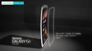 Samsung Galaxy S5 Display Concept
